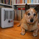 Use Space Heaters and Electric Blankets Safely